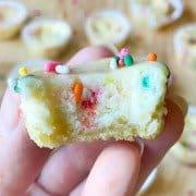 a single funfetti cheesecake