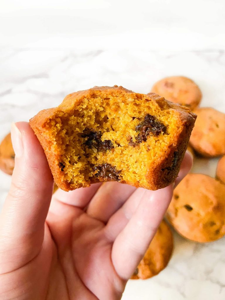 A hand holding a single chocolate chip pumpkin muffin with a bite out of it.